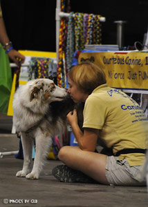 Pet Therapy Tampa