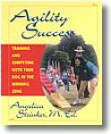 Agility Success