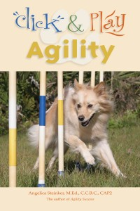 Click and Play Agility