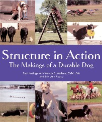 Structure in Action: The Makings of a Durable Dog