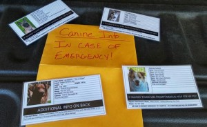 """One great way to organize all the """"In Case of Emergency"""" info you need to share."""