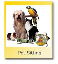 Pet Sitting Florida